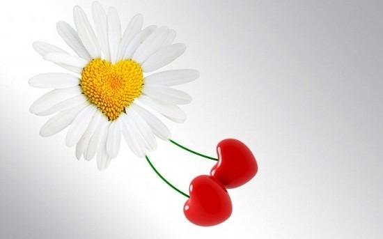 Tips Agar Suami Makin Cinta Istri